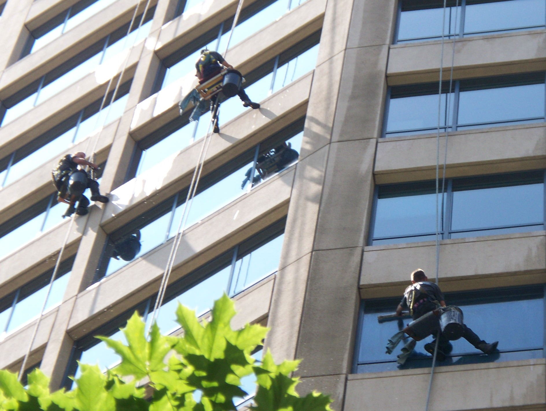 Capabilities are a burden:  Some thoughts on Window Washing